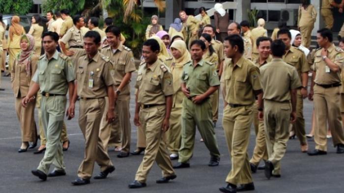 Tenaga Honorer Dihapus, Pekerja Pemerintah Hanya PNS dan PPPK